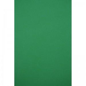 Бумага цветная двусторонняя А4 зеленая ПОШТУЧНО