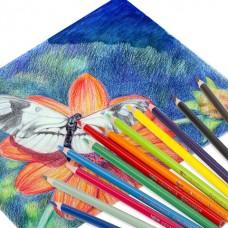 Карандаши цветные акварельные BRAUBERG PREMIUM AQUARELLE, 12 цветов, грифель мягкий 4 мм