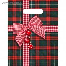 """Пакет """"Шотландский подарок"""", полиэтиленовый с вырубной ручкой, 30 х 23 см, 30 мкм"""