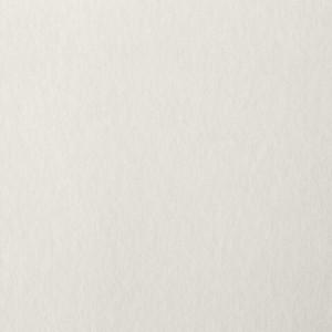 """Папка для пастели А4, 20 л., BRAUBERG, тонированная бумага (слоновая кость), ГОЗНАК, """"Холст"""", 200 г"""