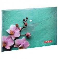 """Папка-конверт с кнопкой BRAUBERG """"Флора"""", А4, 160 мкм, до 100 листов, цветная печать"""