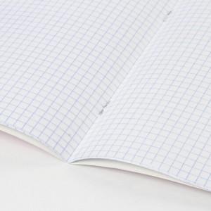 """Тетрадь 12 л. BRAUBERG """"ЭКО"""", клетка, обложка плотная мелованная бумага, АССОРТИ (5 видов)"""