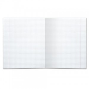 Тетрадь 18 л. BRAUBERG КЛАССИКА, клетка, обложка картон, АССОРТИ (5 видов)